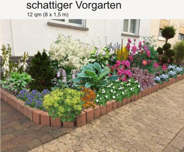 Vorgärten Für Schattige Standorte